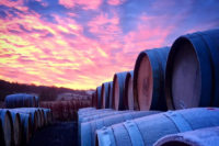 Lindores Abbey Distillery casks at sunset